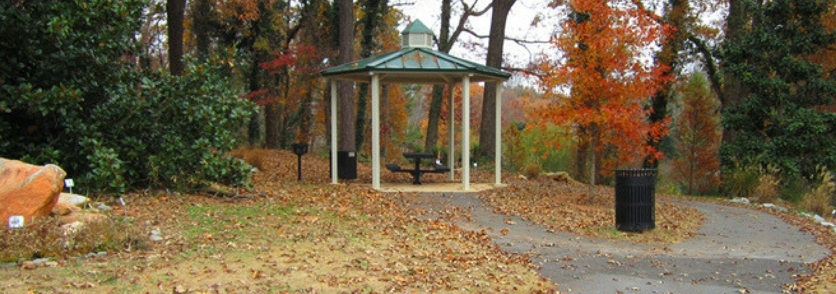 Tucker Park, Georgia Chiropractor