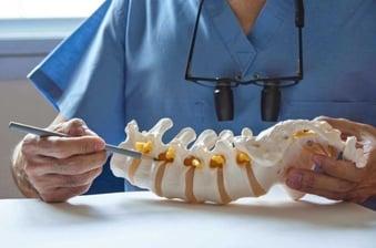 chiropractor-in-midtown-explains-spine