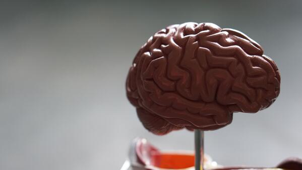Can Chiropractic Care Improve Neuroplasticity?