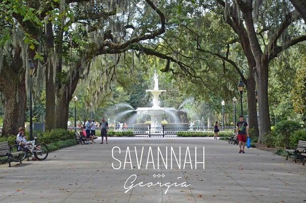 Chiropractor Savannah, Georgia.